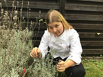 Victoria Trapel beim Lavendelbusch