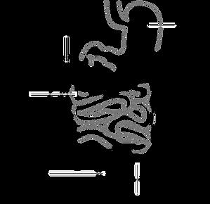 diagram-41638_1280.png