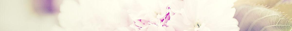 flowers-bouquet-1031266_edited.jpg