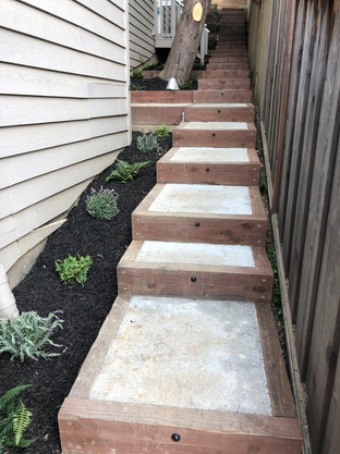 Concrete and wood frame stairway along natural path