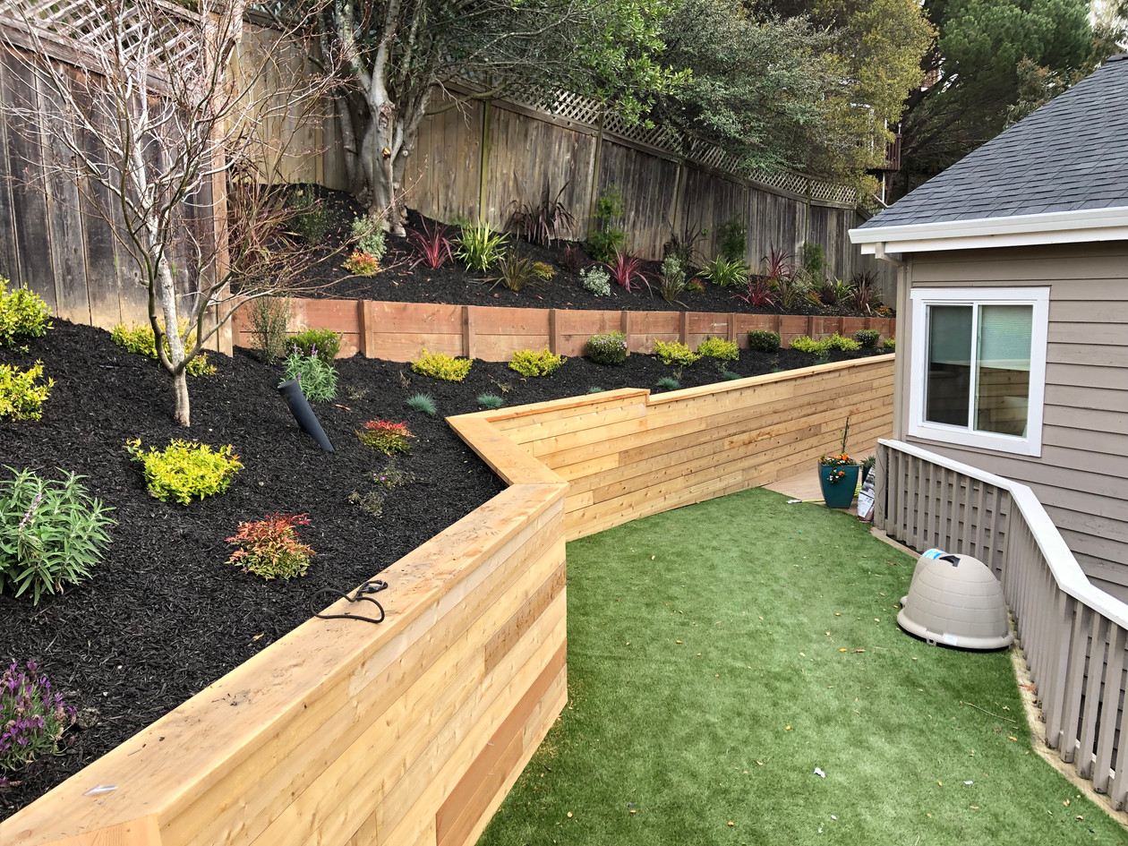 Raised garden bed and lawn