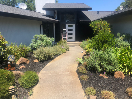 Lush front walkway