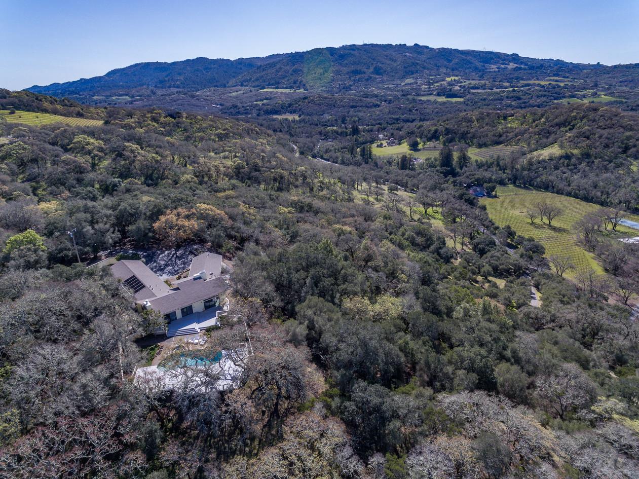 Warm Springs Aerial (4 of 9).jpg