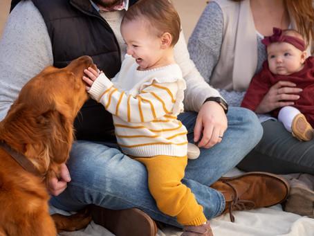 FOUR REASONS TO HAVE FAMILY PHOTOS TAKEN