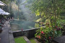 Maya Ubud resort, Ubud, Bali