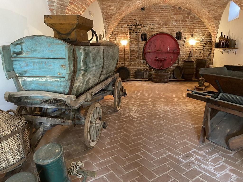 MUSEO DEL TERRITORIO