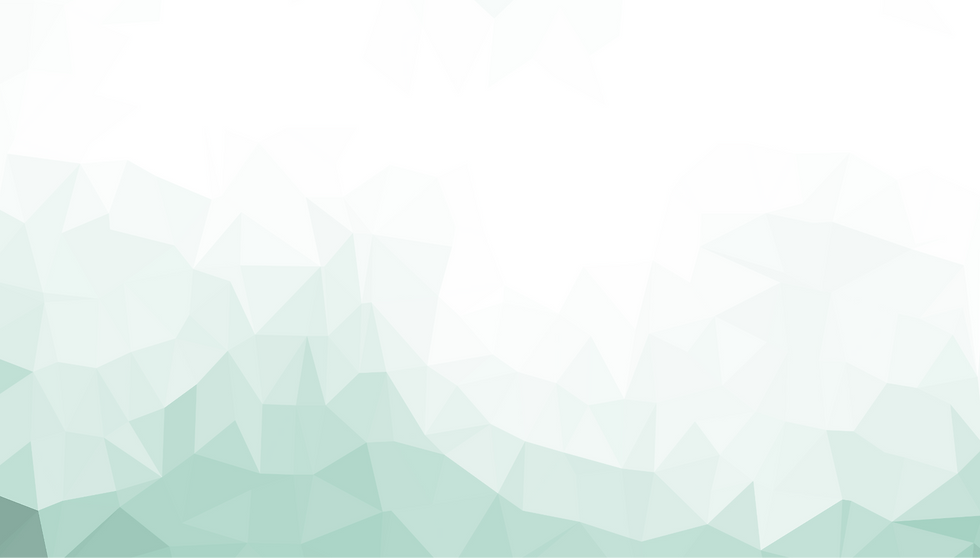 triangulated-image-1.png