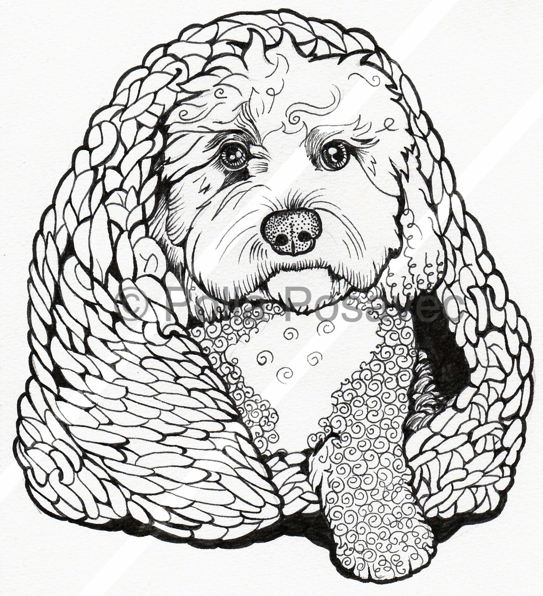 Doodle dog under rug