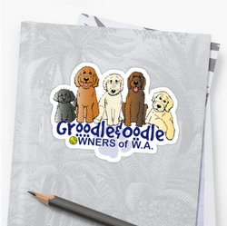 Groodle & Oodle Club (blue)