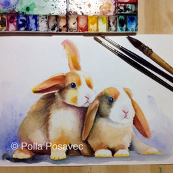 Mini Lop rabbits WIP