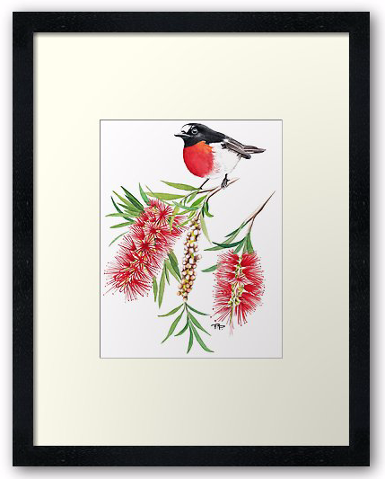 Robin & Bottlebrush