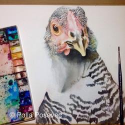 Chicken & Egg WIP2