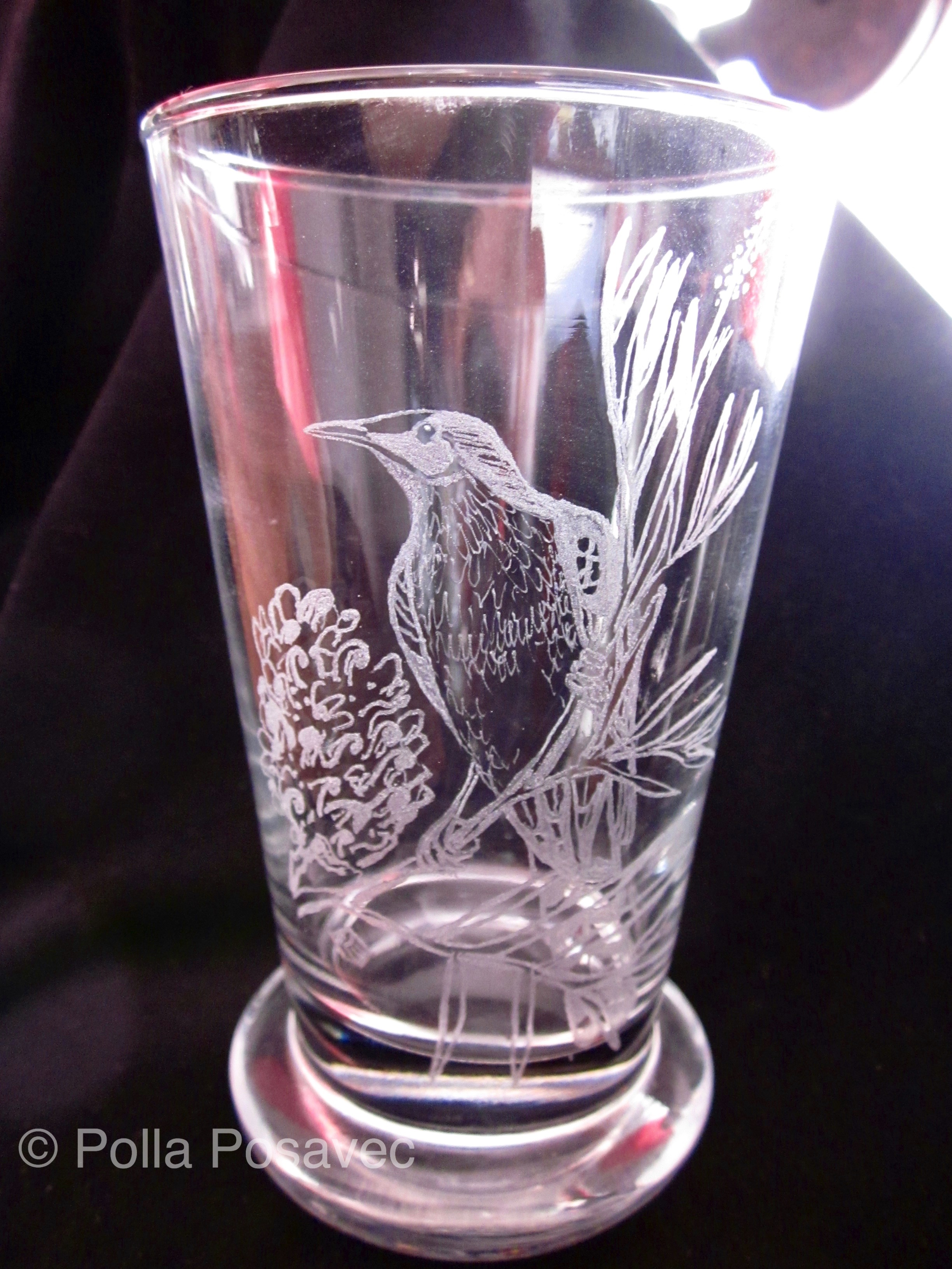 Glass Engraving - wattlebird