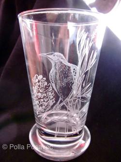 Glass Engraving - wattlebird