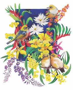 Silvereyes & native flowers (W)