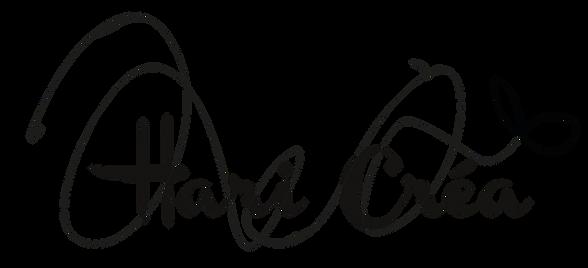 Graphiste et web designer à Toulouse