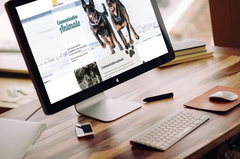Création site internet : communication animale et soins énergétiques