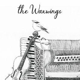 waxwings.jpg