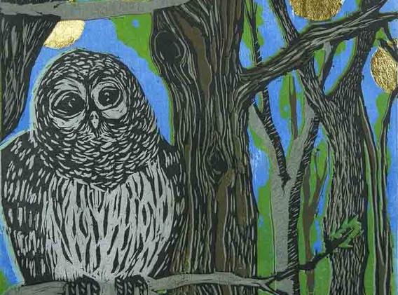 MARSHALL Barred Owls 2.jpg