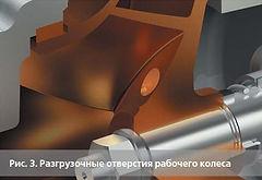 ris3.jpg.jpg