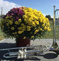 Mum vs. Trumpet.png