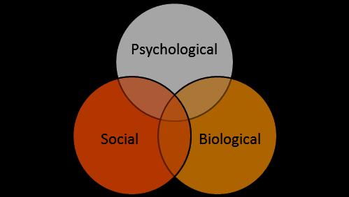 Figure 1 – Bio-psycho-social development model (Engle, 1977)