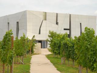 Austrian Wine Touring