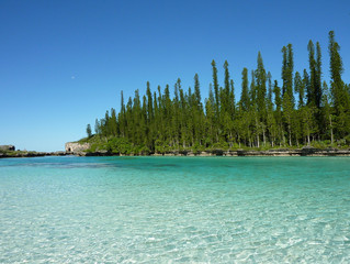 Featured UNESCO World Heritage Site of January: Lagoons of New Caledonia