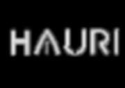 HAURI_Logo_Kontur_Final_17.7_1_.png