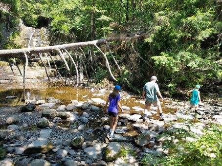ISO Free Entertainment for the Kids?  Take a Hike!