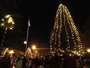 Nazareth Tree.jpg