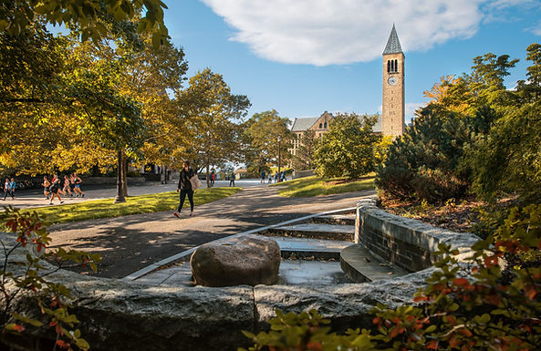 Cornell University*