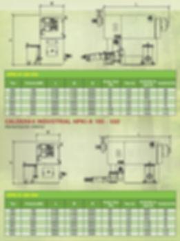 Ficha técnica caldera Gilles Austria policombustible automática