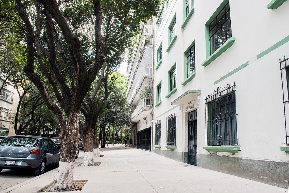 The beautiful area of Condesa in Mexico City