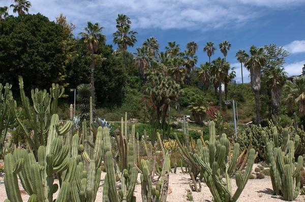 Montjuic Garten 4.jpg