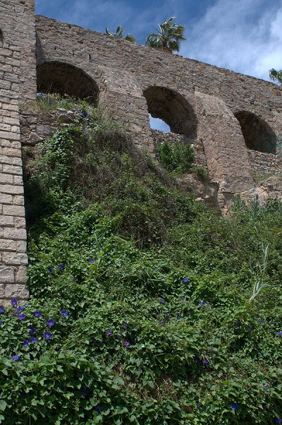 Montjuic Garten 1.jpg