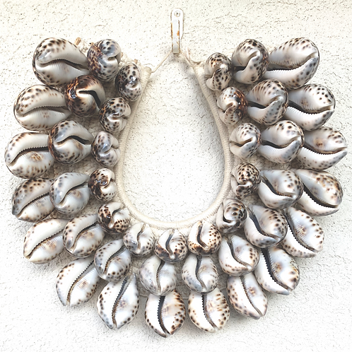 Cowrie Papua Wall Decor