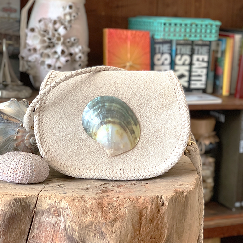 Sand × Natural Seashell Pochette