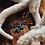 Thumbnail: Paua Shell Hat Pin