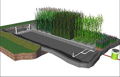 Estação ecológica de tratamnto de efluentes, zona de raízes, wetlands, filtro plantado com macrófitas