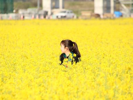 春よね〜🌸