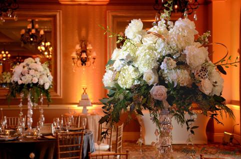 Fort Myers Wedding Photography