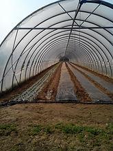 Cascina Gasparina coltivazioni