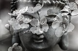 buddha-1279902_1920_edited.jpg