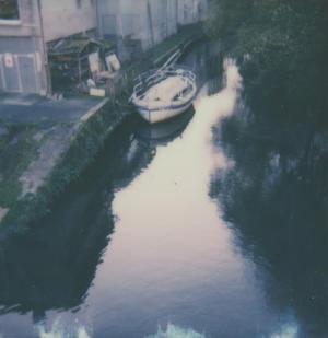 Polaroid . 2021