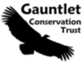 GCT_logo1.jpg