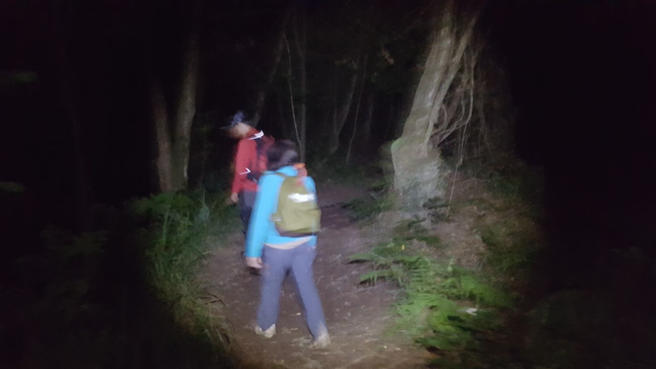 Senda Nocturna