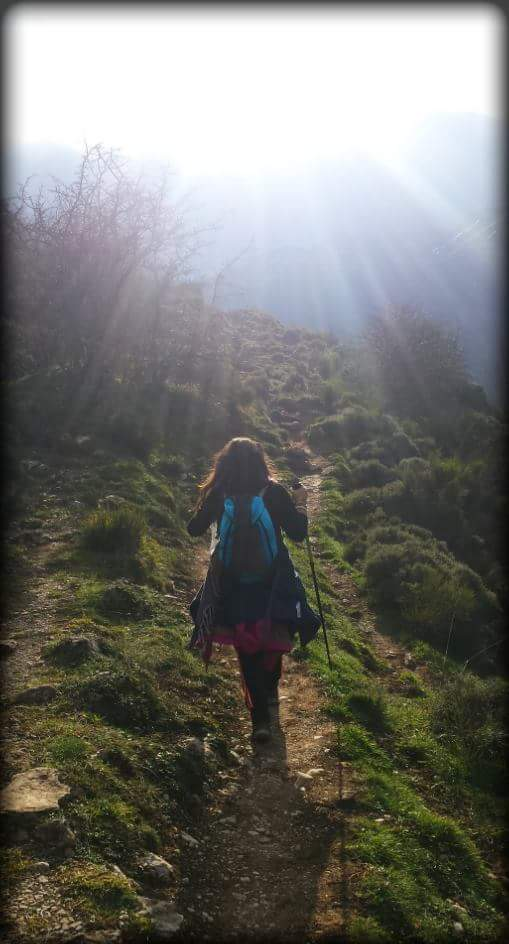 Camino de la Luz