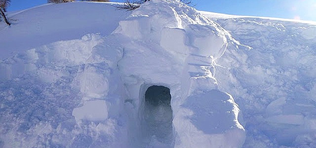 Construction d'igloos et abris en neige