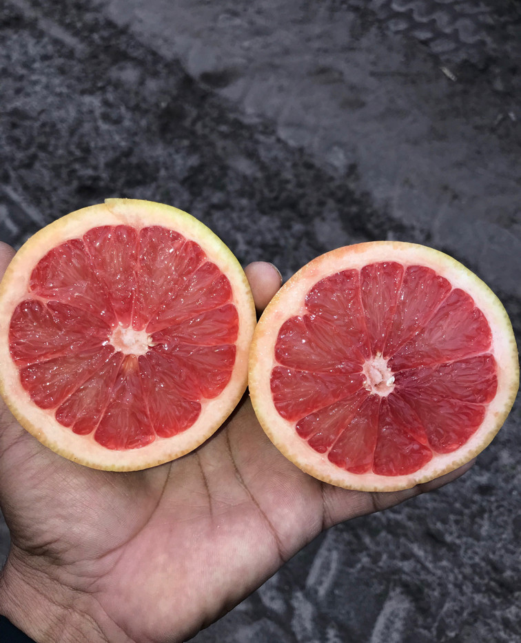 Ruby Sweet Grapefruit.jpg